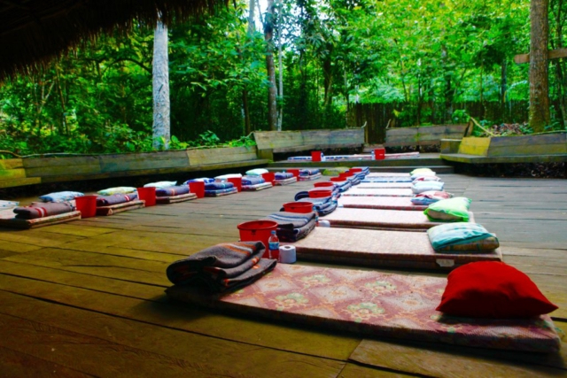 And as the moon rises, the magic of the Ayahuasca will begin