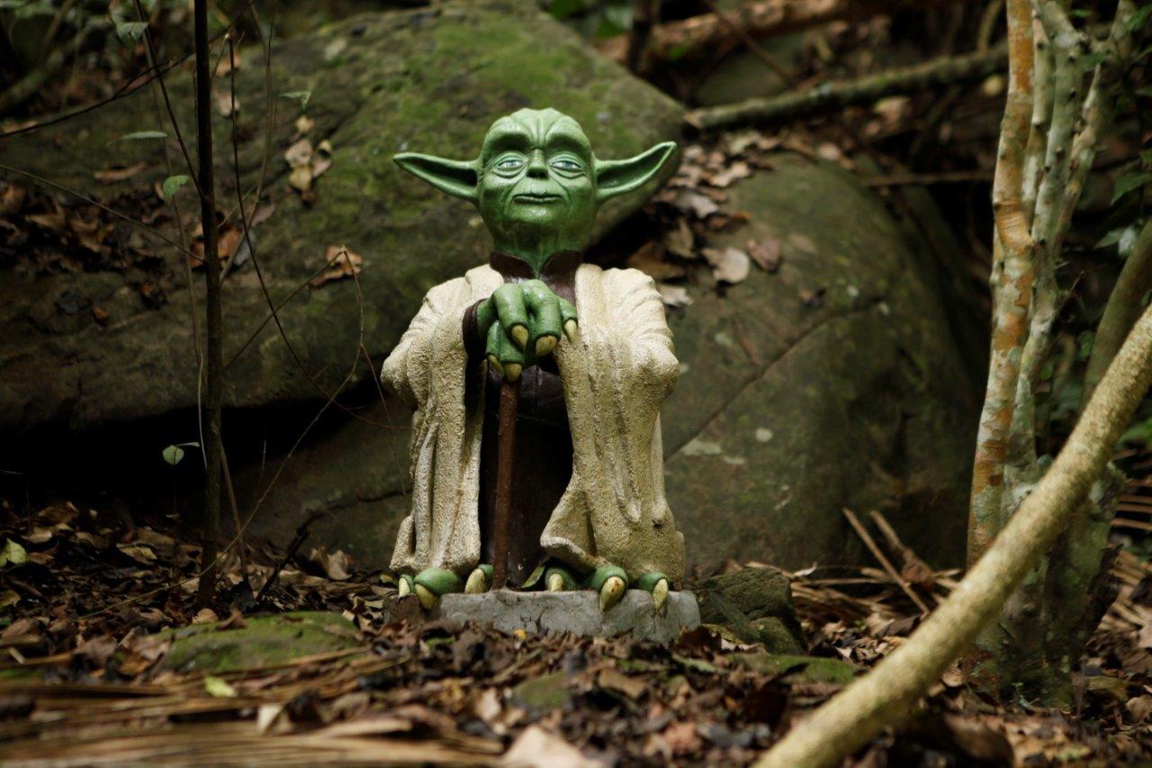 Yoda by Metsa