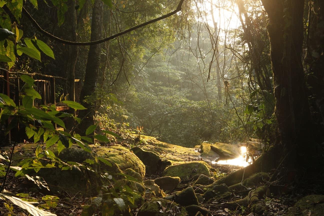 The river that runs through TierraMitica at dusk