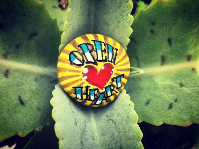 Open Heart by Metsa